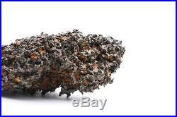 Rare Sericho Pallasite Meteorite Kenya, Africa very large collector piece 1996g