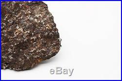Rare Sericho Pallasite Meteorite Kenya, Africa very large collector piece 3402g